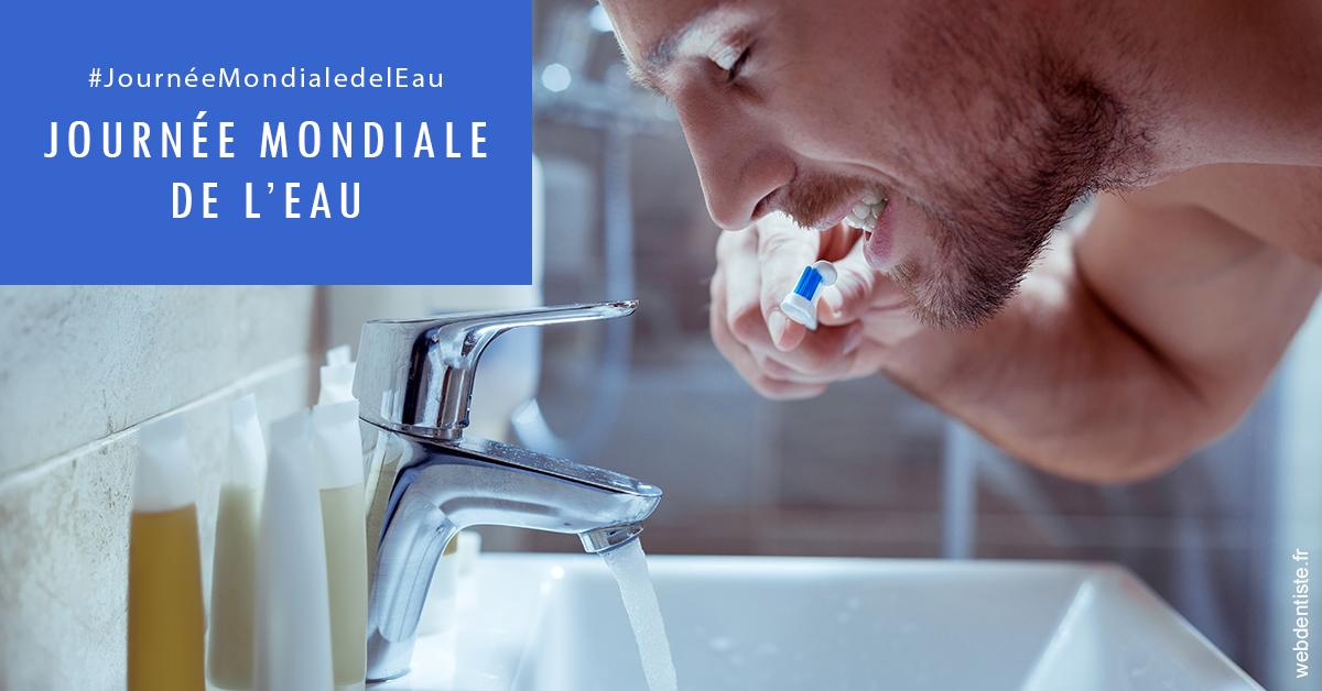 https://dr-nigoghossian-cecile.chirurgiens-dentistes.fr/Journée de l'eau 2