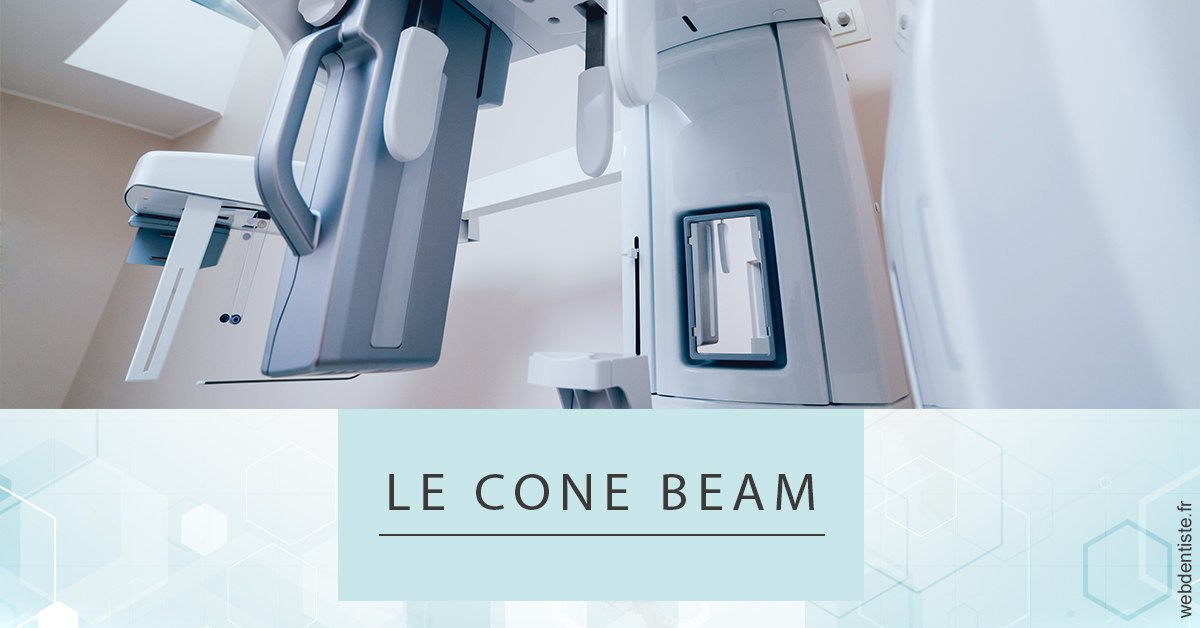 https://dr-nigoghossian-cecile.chirurgiens-dentistes.fr/Le Cone Beam 2