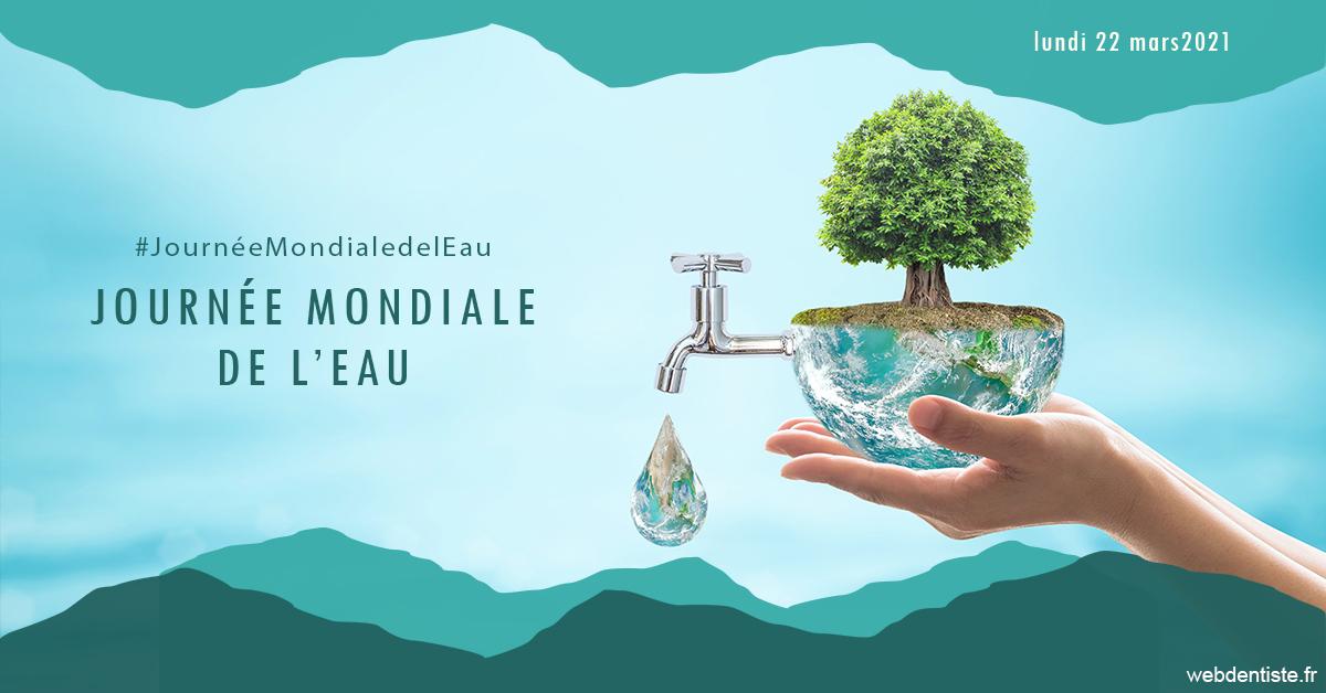 https://dr-nigoghossian-cecile.chirurgiens-dentistes.fr/Journée de l'eau 1