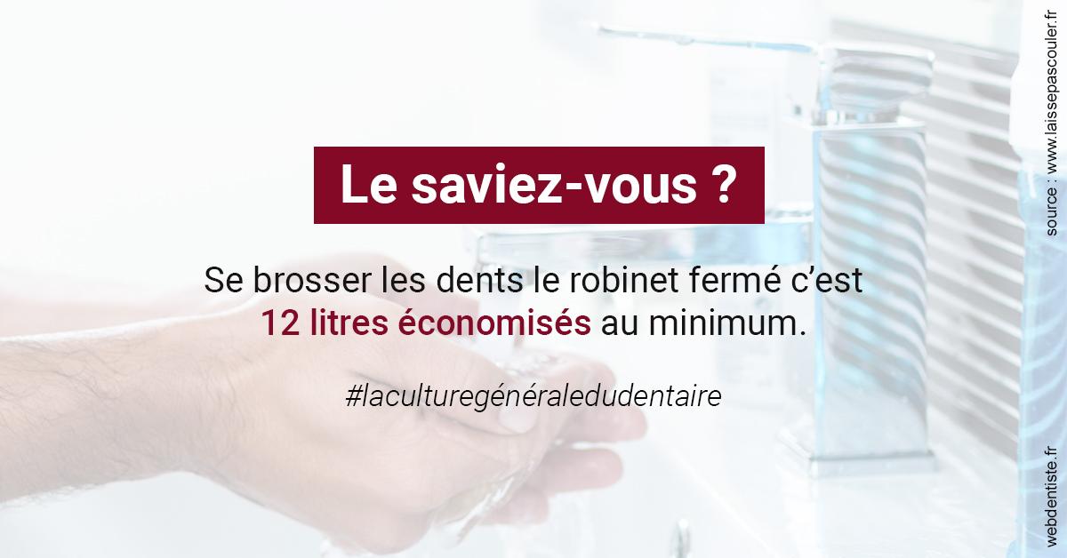 https://dr-nigoghossian-cecile.chirurgiens-dentistes.fr/Economies d'eau 2